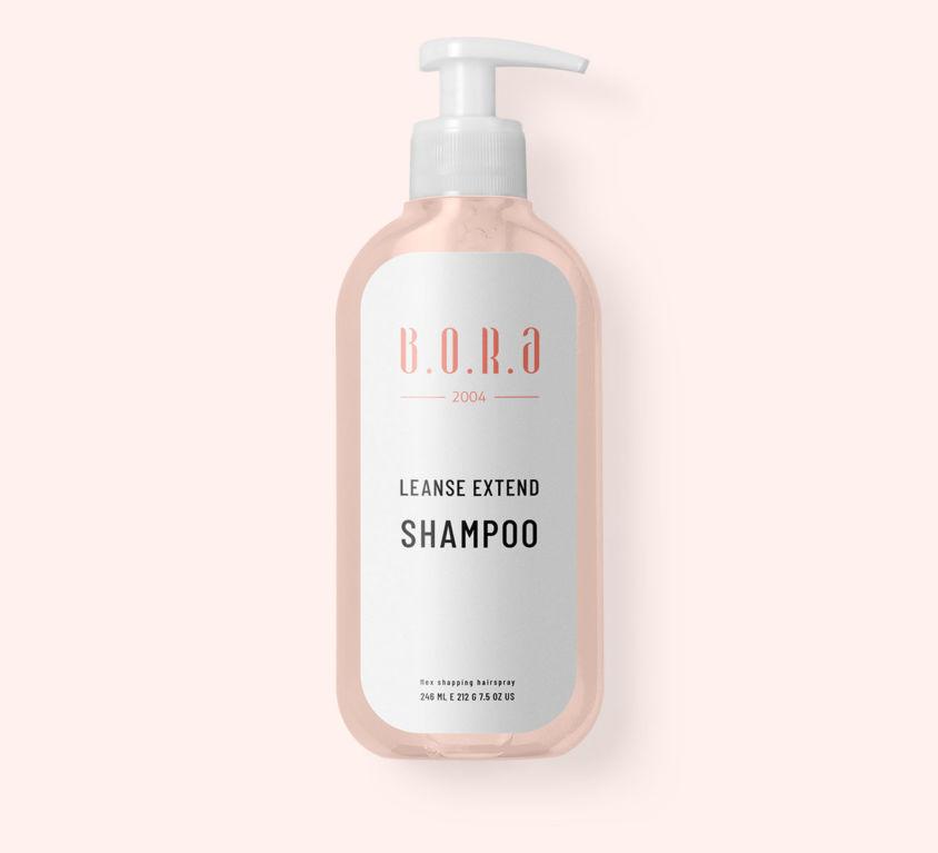 Shampoo (Demo)